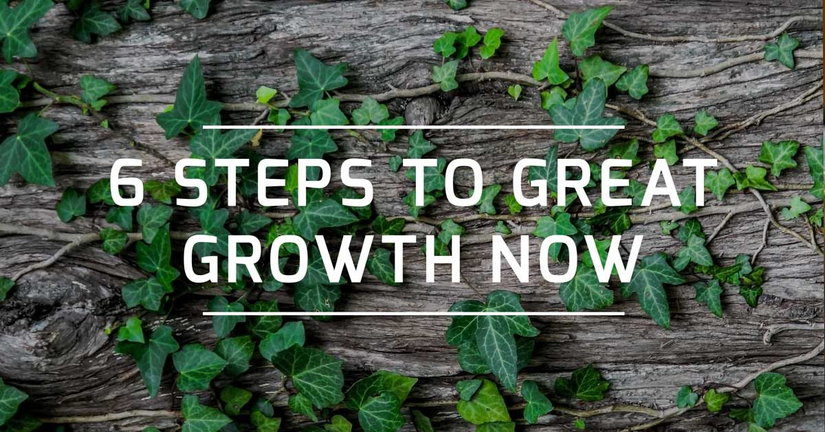 6 steps to great growth now featured